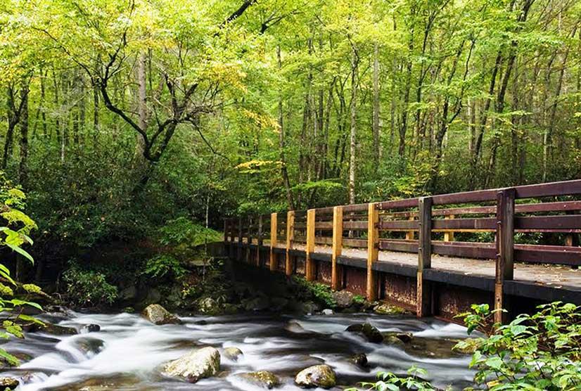 永久或临时使用的钢结构景观桥